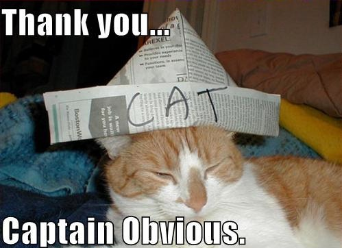 thank-you-captain-obvious