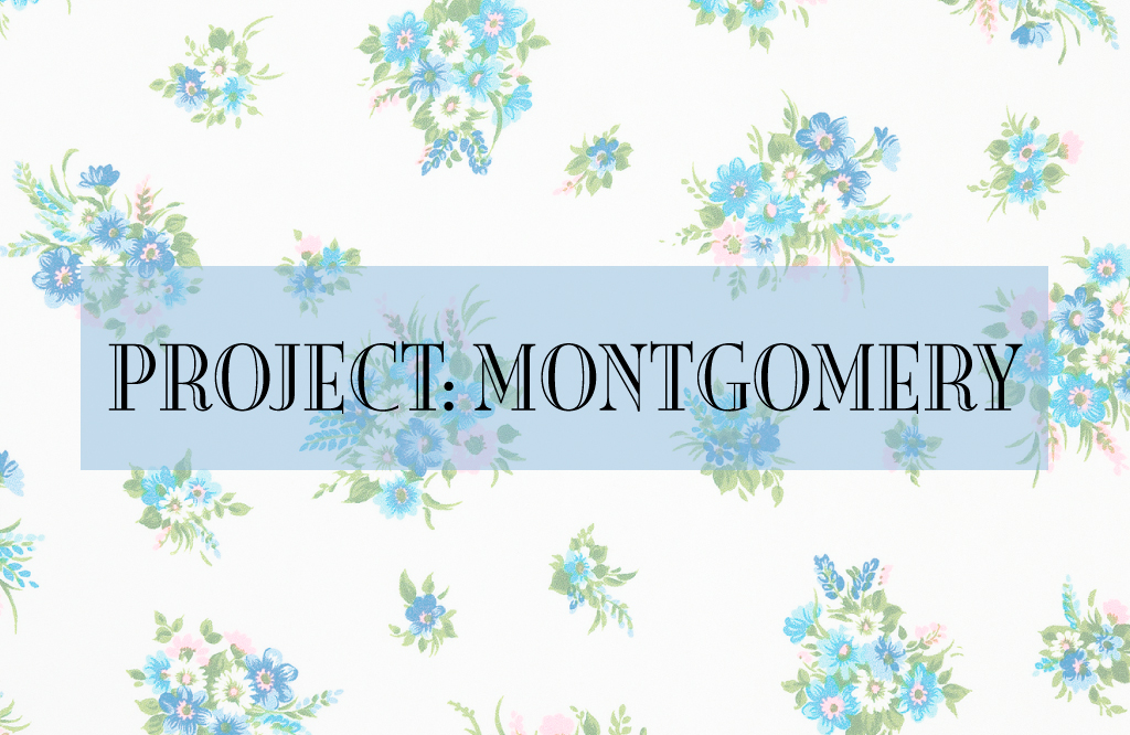 project montgomery annereadalong2017 blue castle considerations - Blue Castle 2016